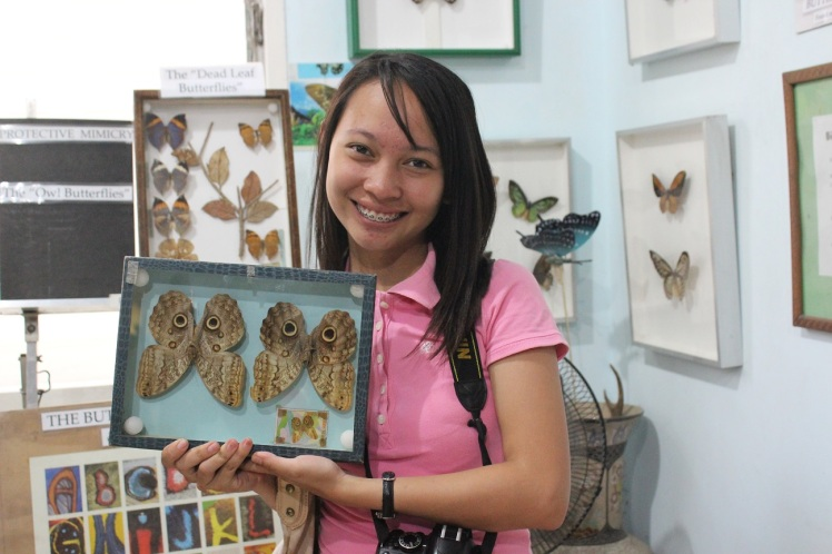 Me, my eye bags and the preserved owl butterflies.